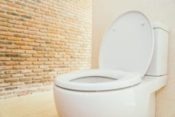 tualet_vybrat